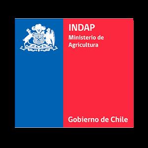 indap1
